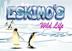 Eskimo's Wild Life