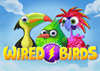 Wired Birds