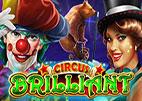 circus brillant