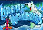 arctic-wonders