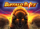 buffalo-blitz