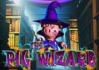 pig-wizard