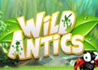 wild-antics