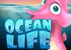 ocean-life