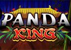 panda-king