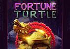 fortune-turtle