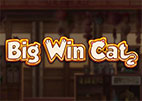 big-win-cat