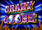 crazy-goose