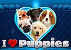 i-heart-puppies