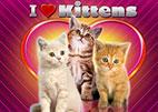 i-love-kittens