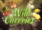 wild-cherries