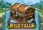 wild-falls