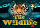 the-wildlife-2