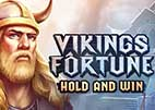 vikings-fortune-hold