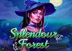 splendour-forest
