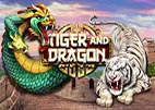 tiger-dragon