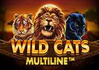 wild-cat