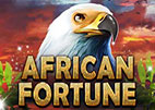 african-fortune