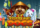fortune-dogs