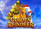 golden-reindeer